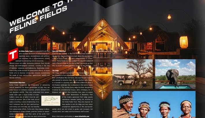Paddock Magazine feature
