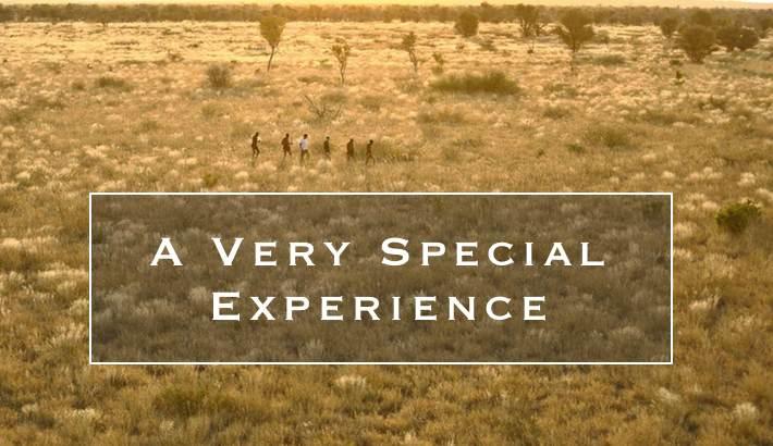 A Very Special Experience TripAdvisor review