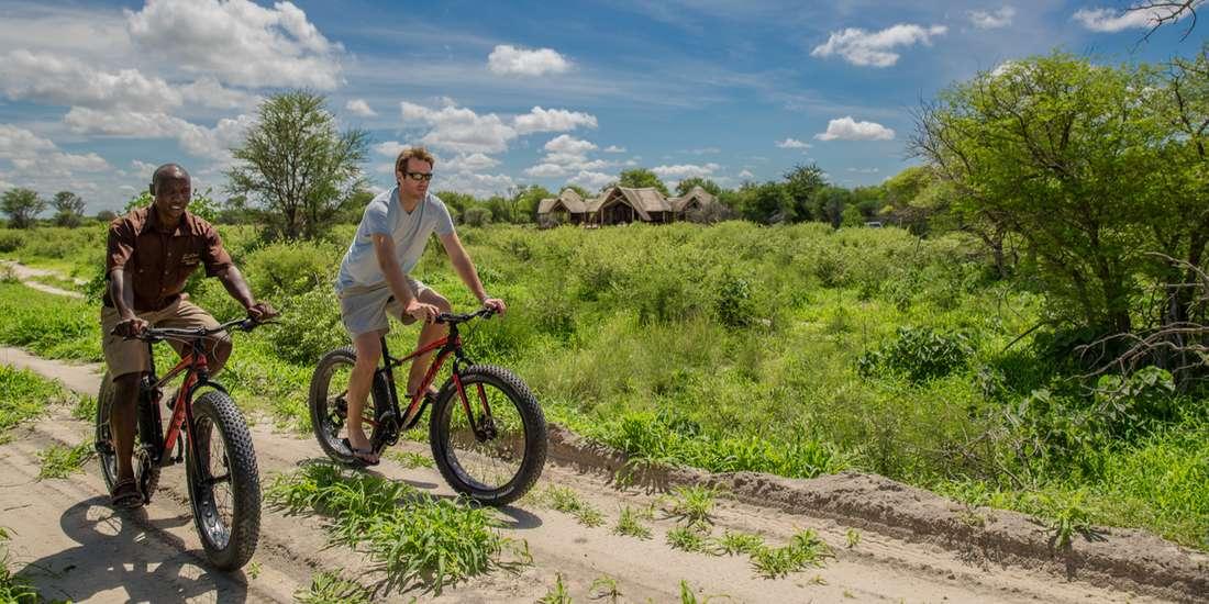 Mountain biking in the Kalahari green season