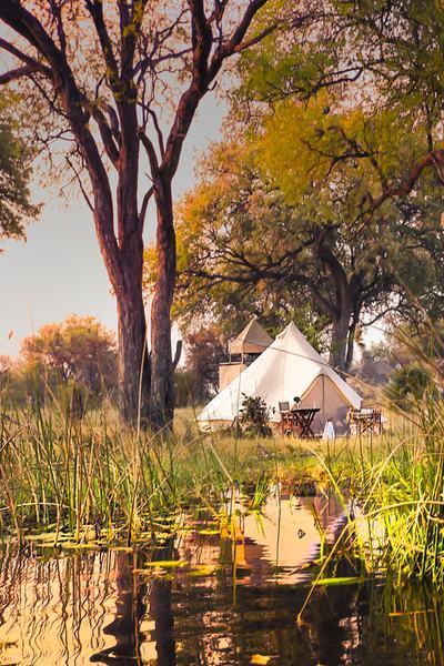 Khwai-Kalahari Journey