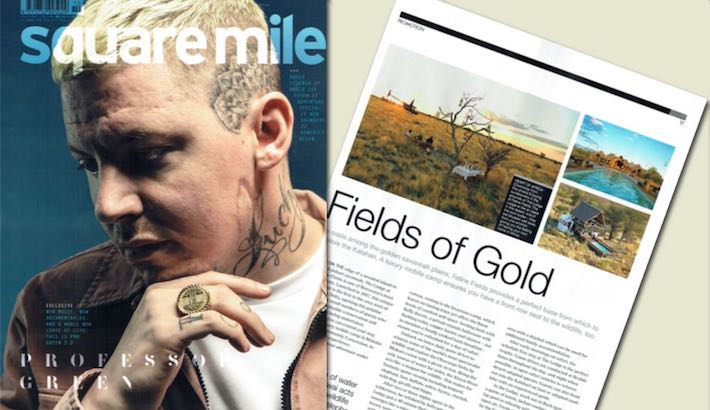 Square Mile article - Fields of Gold