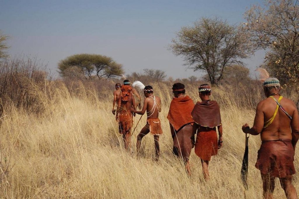 Bushmen walking in line